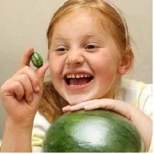 實拍世界上最怪異的西瓜!連見都沒見過!切開竟然是這樣的!