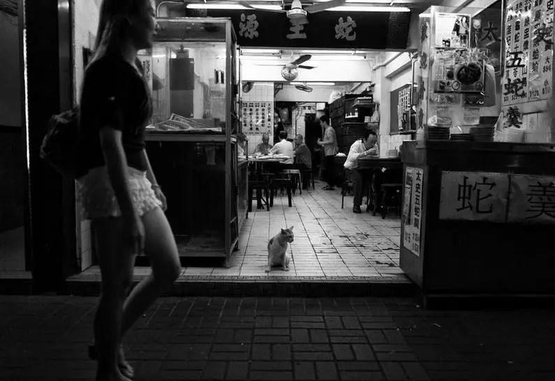 紐西蘭攝影師拍攝的香港九龍的夜晚,他捕捉到的一些畫面讓人震驚