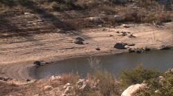 Lake Morena Water Level