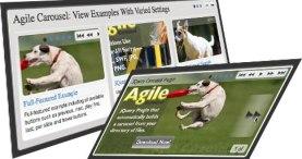 agile-carousel