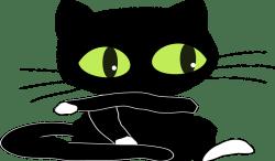 cat-47099_640