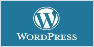 【WordPressテーマ】ミニマルでとてもシンプルなレスポンシブテーマ『DW Minion』