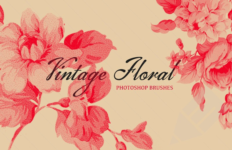 800x518_Vintage-Floral-Brushes-Preview-1