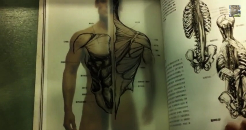 Anatomy for the Artist-p2-1