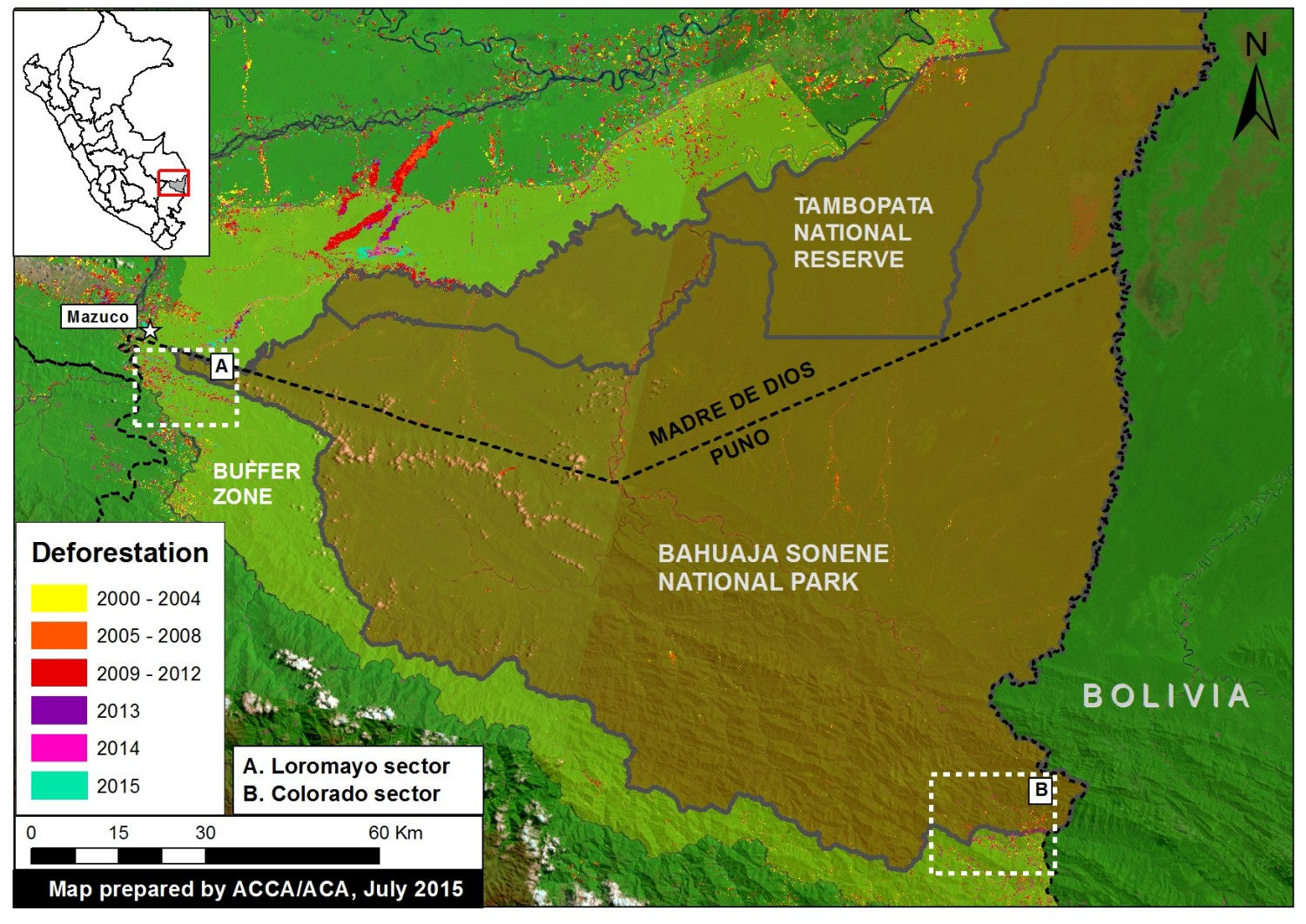 Mesa De Cultivo Amazon Bahuaja Sonene National Park Increasing Deforestation Within And