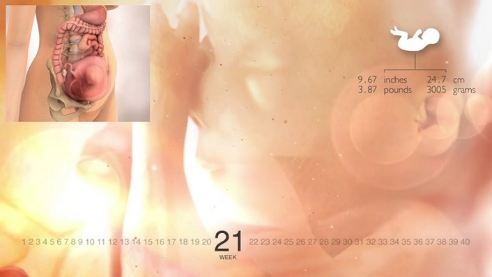 21 Weeks Pregnant (Pictures Belly and Ultrasound), Fetal Movement