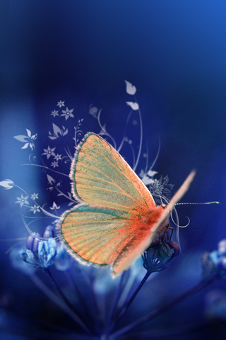 3d Touch Wallpaper For Android Wallpaper Nature Pour Iphone Et Ipod Touch Info Idevice