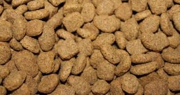 Kolik popelovin obsahují granule vašeho psa