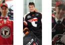 LHJMQ : trois hockeyeurs portneuvois au nombre des joueurs repêchés