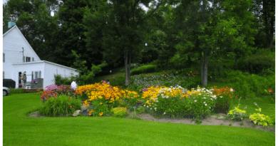 Participez aux concours de la Fête des fleurs