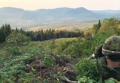 Une centaine de militaires s'entraînent dans la Vallée Bras-du-Nord