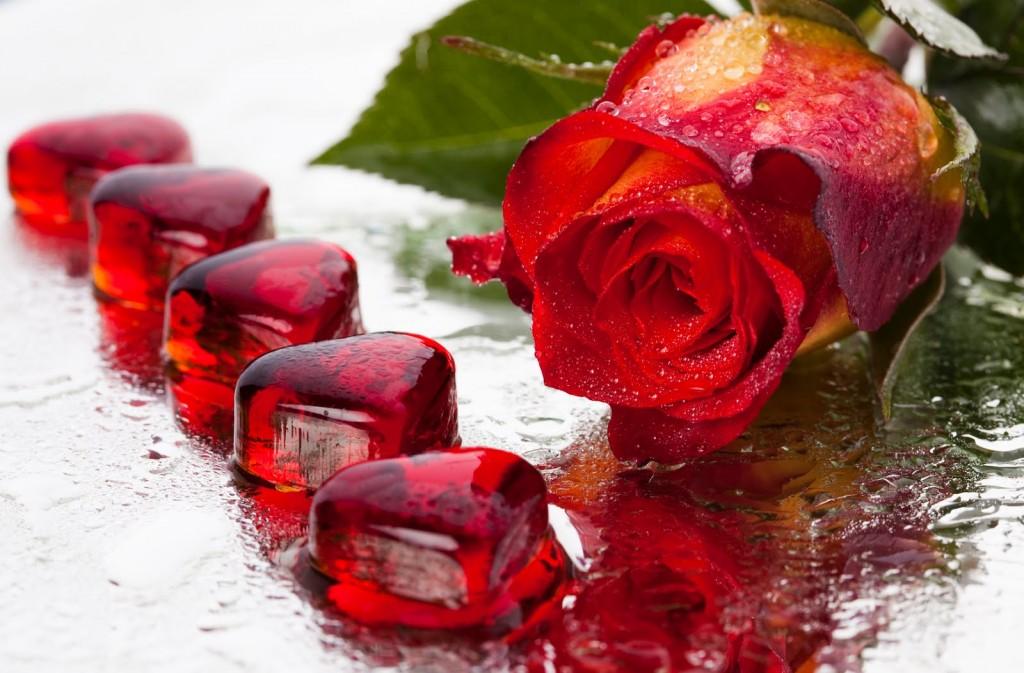 Imágenes de Corazones con Frases de Amor con Movimiento y Brillo - rosas y corazones