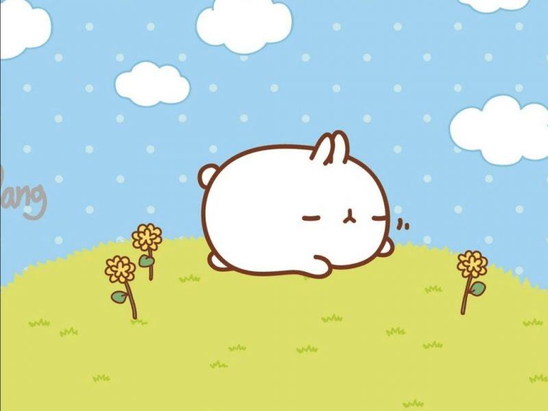 Totoro Cute Wallpaper 50 Background Lucu Dan Imut Yang Gemesin Dan Menarik