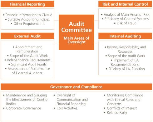 Abengoa Informe Anual 2009  Corporate Governance  Audit