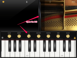 IMG 0893 250x187 Exclusive First Look   IK Multimedia iGrand Piano for iPad