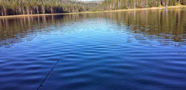 Bucks Lake fishing