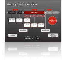 Drug Development Cycle