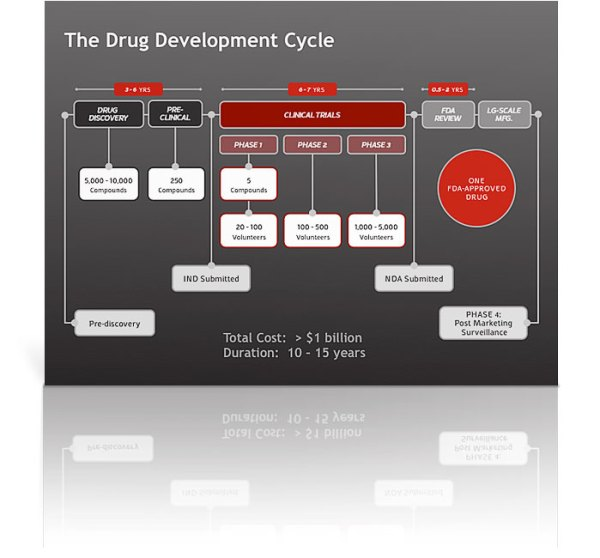 Drug Development Cycle Diagram