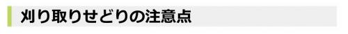 SnapCrab_NoName_2016-2-10_1-33-26_No-00