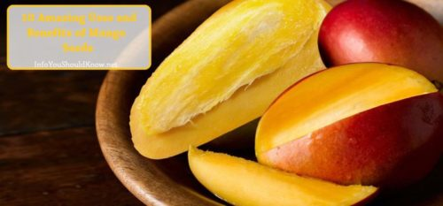10-Amazing-Benefits-And-Uses-Of-Mango-Seeds