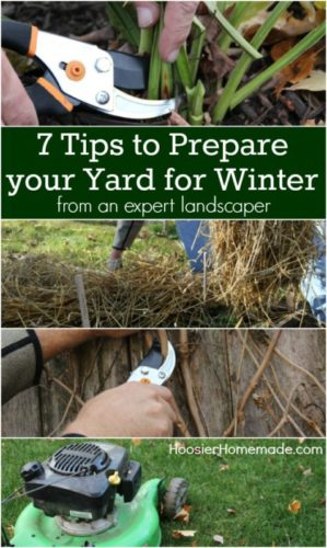 7 Tips To Prepare Your Yard For Winter Info You Should Know