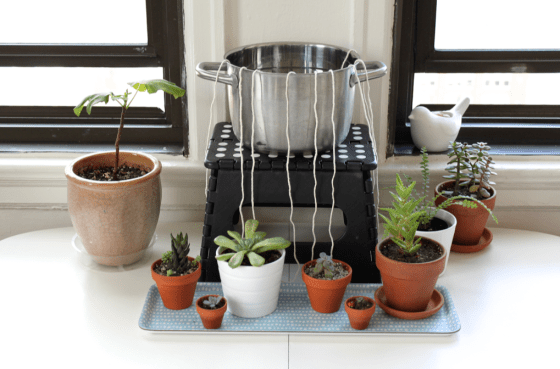 diy self watering system for houseplants info you should know. Black Bedroom Furniture Sets. Home Design Ideas