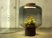 These lamps let you grow plants anywhere - even in ...