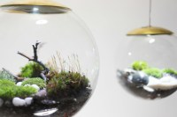 These amazing terrarium lamps grow plants in even the ...