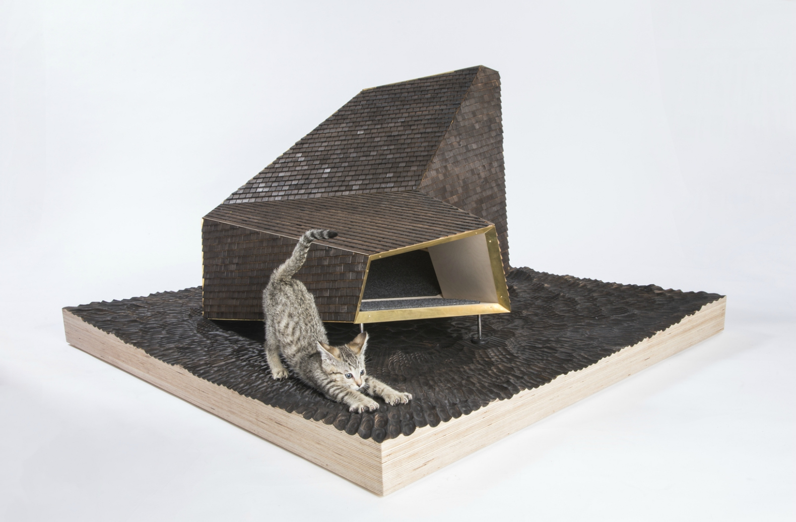 Cat House Plans Architects Design Incredible Cat Shelters To Raise Money
