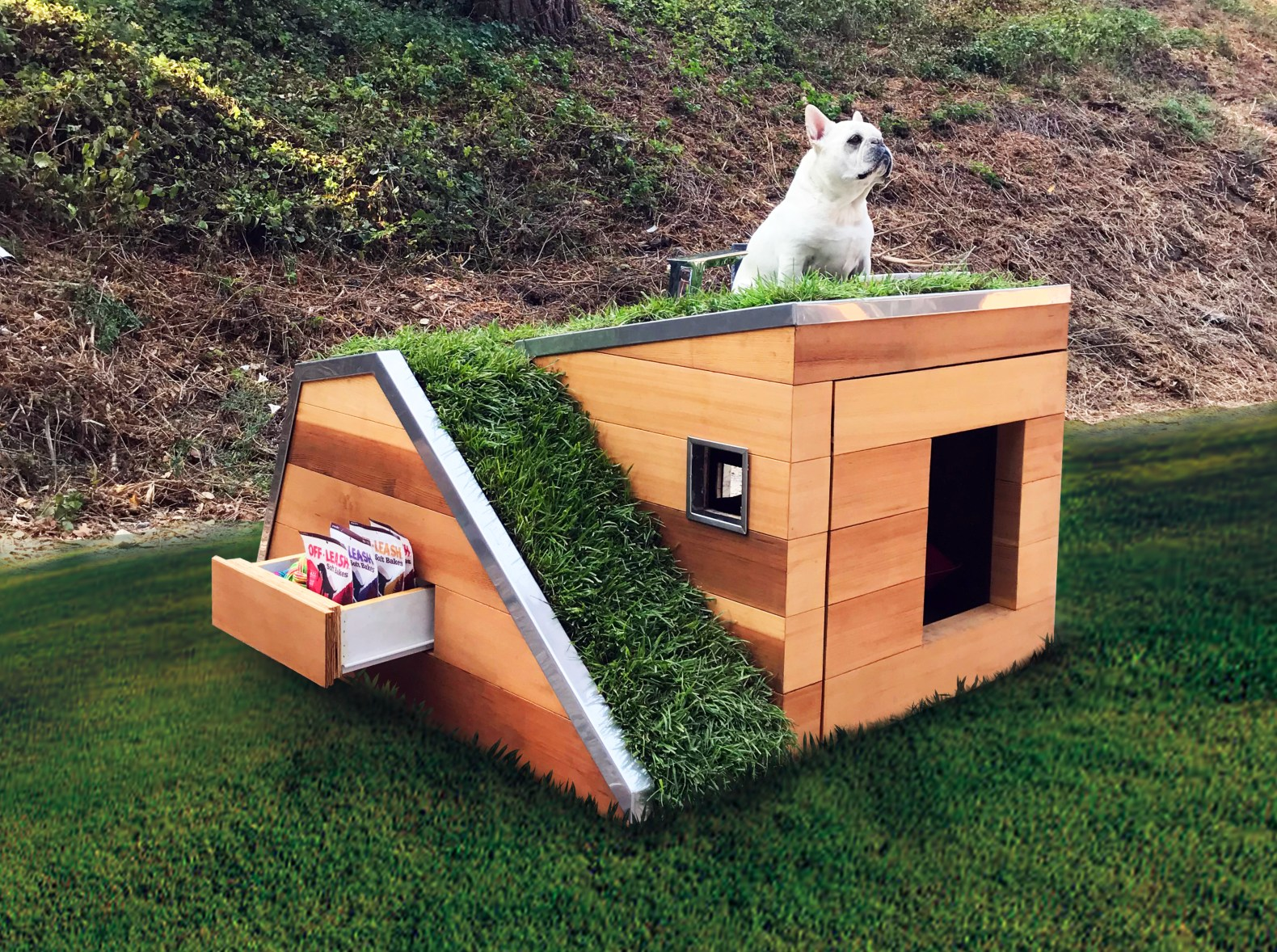 Dog House Solar Powered Sustainable Dog House With A Green Roof Keeps Pups Cool
