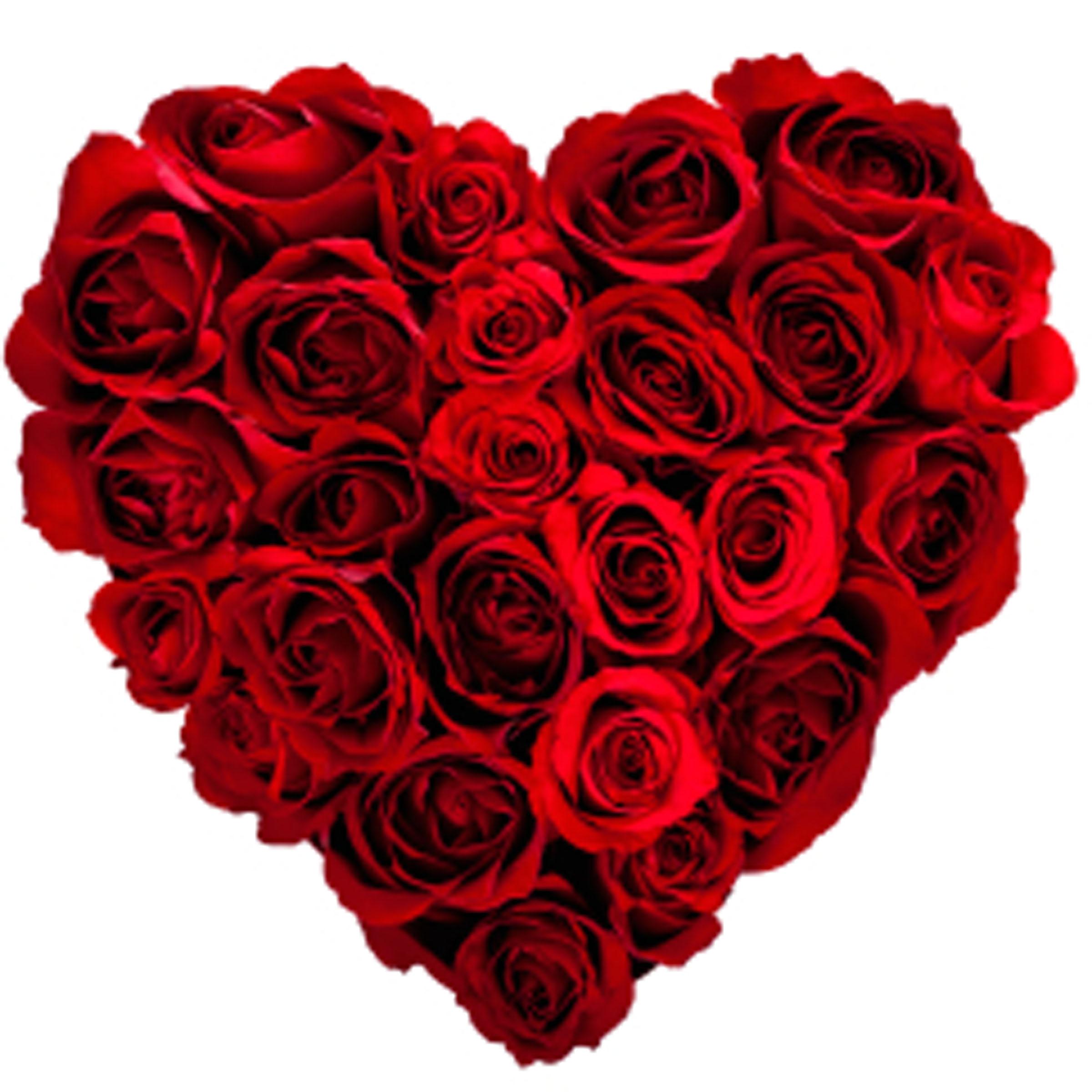 Valentine S Day Heart Rose
