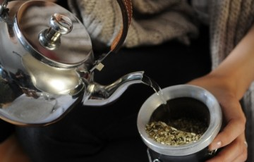 yerba mate, mate time