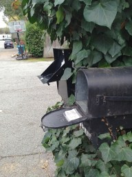 Post image for University Heights neighborhood hit by mailbox theft