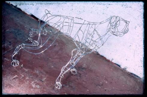 wire_dog