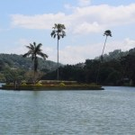 dambulla to kandy