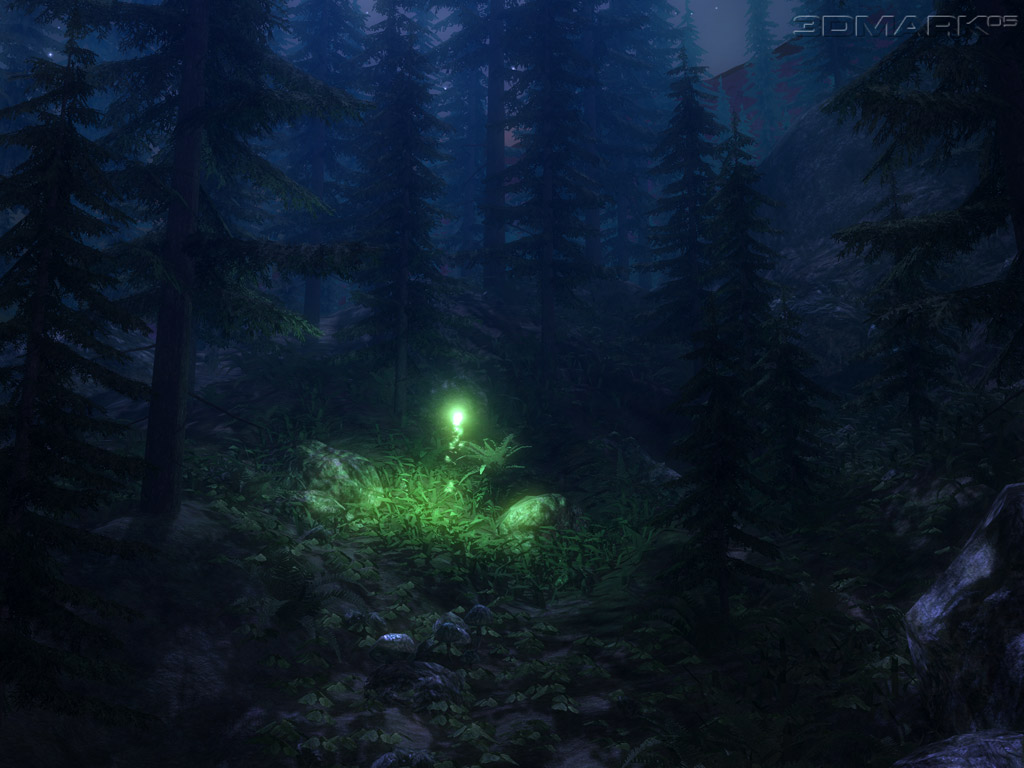 Firefly Insect At Night Firefly Insect Wallpaper