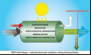 BSP principle_aka_Bio_Solar_Grafik_