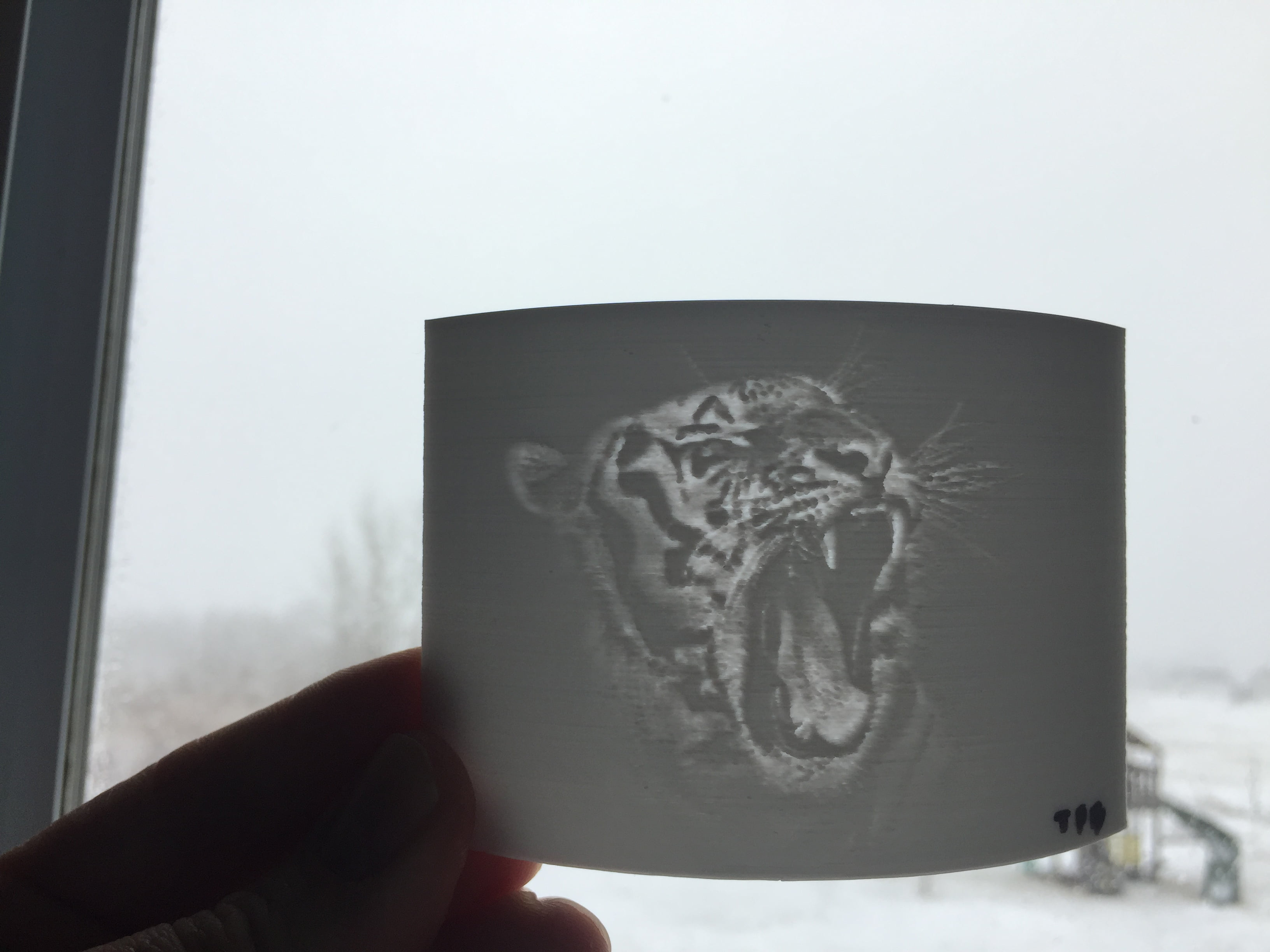 3d Net Lithophane Tutorial 3d Printing Pictures On The Tornado Inov3d