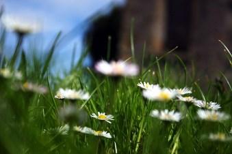 photoblog-20050507