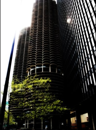 Look up at Marina City