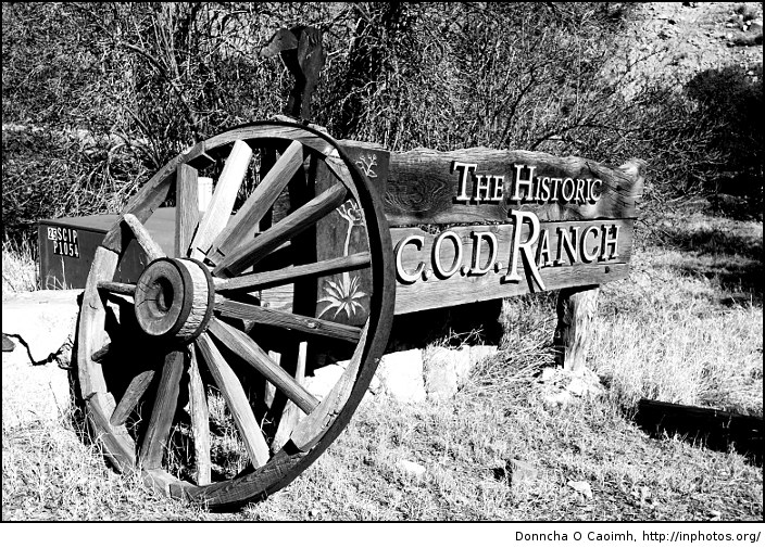 The Historic COD Ranch