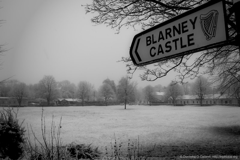 Blarney in the Snow