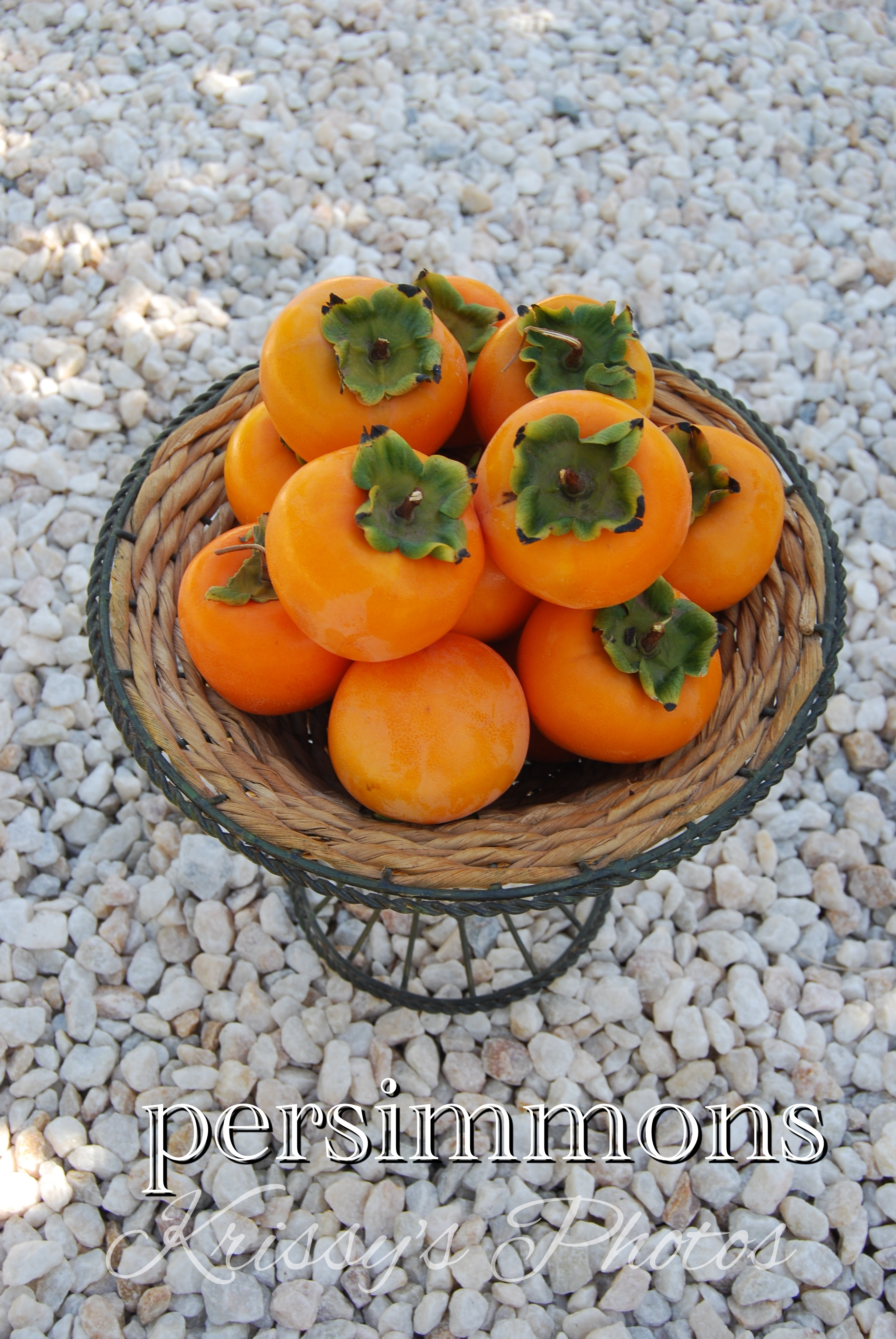Particular Ion Just Fruits Persimmon Exotics Nursery Review Just Fruits Prosciutto Exotics Blueberry houzz-02 Just Fruits And Exotics