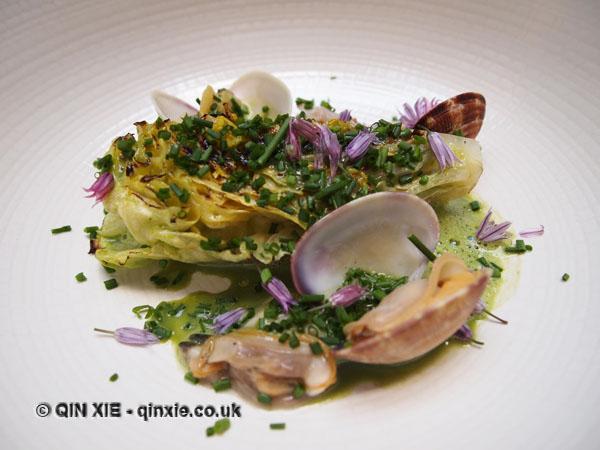 lettuce, Venus clams, weisaus, De Vitrine, Ghent