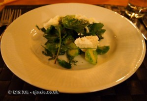 "Salad of Brussels sprouts, Finnish ""ricotta"" and wild herbs with pine needle dressing, foraging with Sami Tallberg, Helsinki"