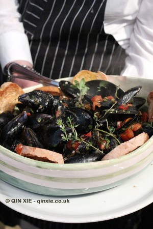 Mussels with tomato and garlic sauce, Portivene, Portovenere