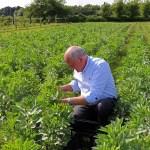 Alex Aitken at a Hampshire pick-your-own farm
