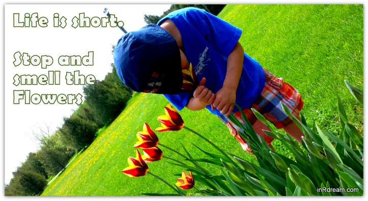 Life is short stop to smell the flowers Quote