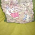 Peter Rabbit cushion in the room