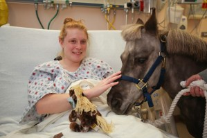 Petie the Pony logged more than 90 hours of bedside care in 2012 [Photo Gallery]